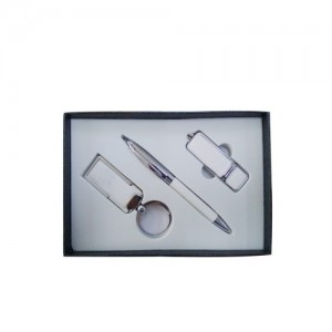 Keychain, Metal Pen & USB